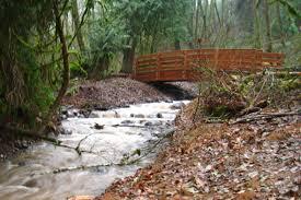 Tryon creek bridge